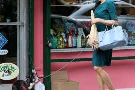 Famke Janssen Goes to the Pet Store with Her Prada Bag and Scruffy Pup