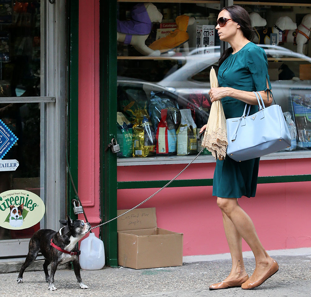 662db163721c Famke Janssen Goes to the Pet Store with Her Prada Bag and Scruffy Pup