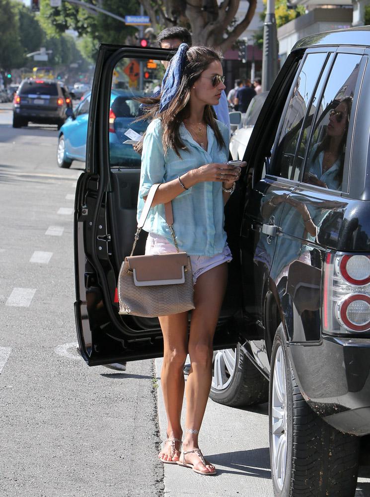 Alessandra Ambrosio Chloe Clare Python Shoulder Bag-1