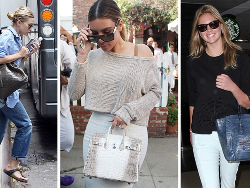 Celebrities Exotic Handbags