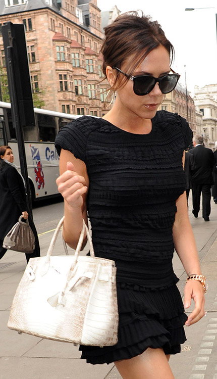 Celebrity Exotic Handbags-54