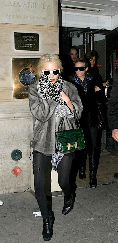 Celebrity Exotic Handbags-59