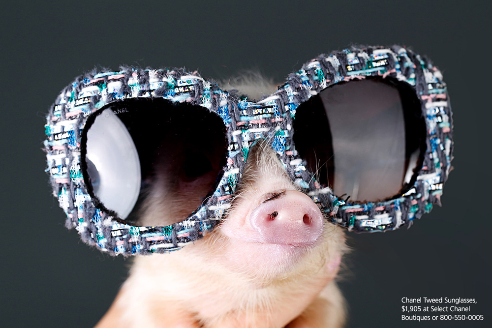 Chanel Tweed Sunglasses