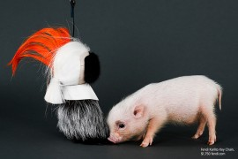 ELLE Magazine Posed Fall's Best Accessories with an Adorable Piglet