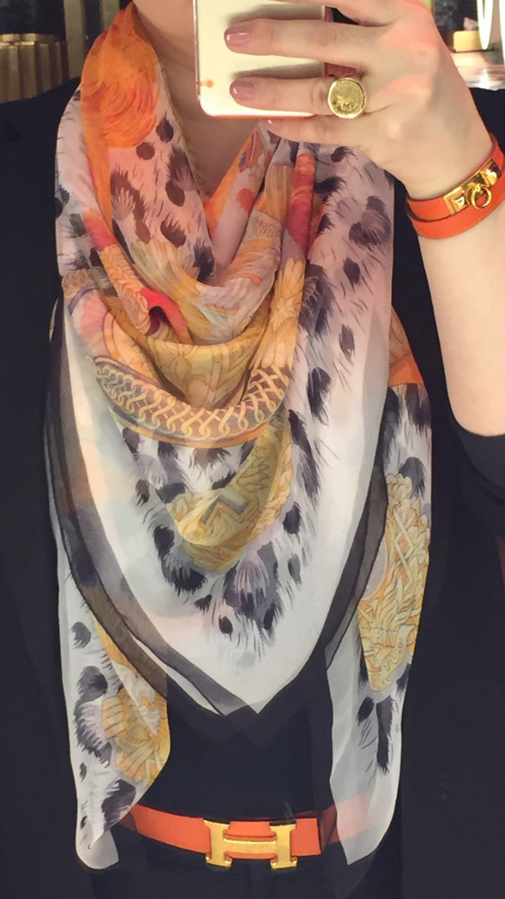 Hermes Scarf and Accessories