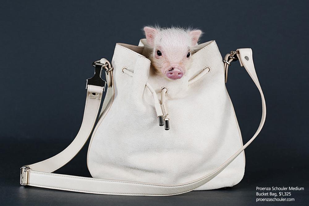 Proenza Schouler Bucket Bag