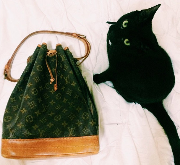 Vintage LV Black Cat
