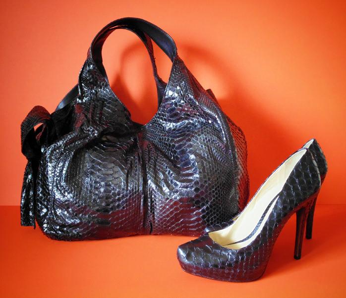 Valentino Python Bag and Shoes