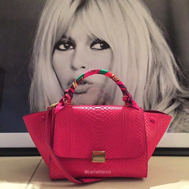 CamelliaNoir Trapeze Bag