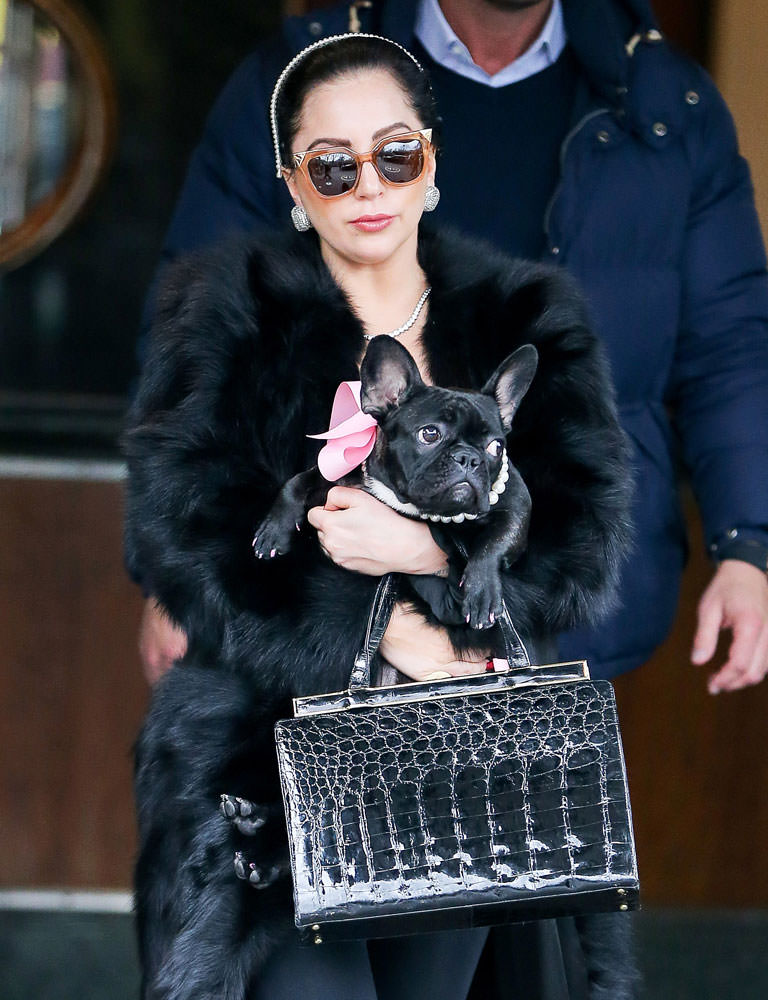 Lady-Gaga-Vintage-Bag