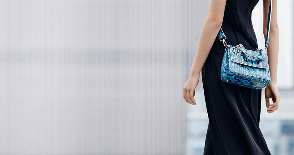 Be Dior Python Bag