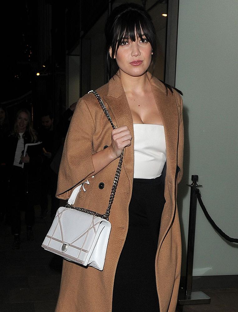 Rihanna Christian Dior Lizard Diorama Bag   celebrity bags ...