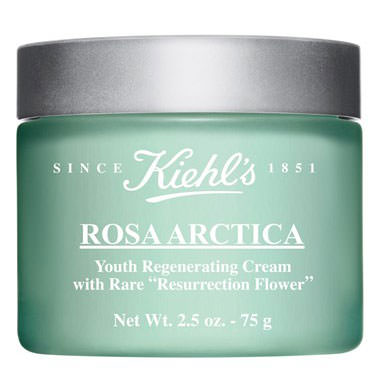 Kiehl's-Rose-Arctica-Face-Cream