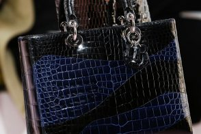 Dior Continues Its Solid Handbags Streak for Fall 2015