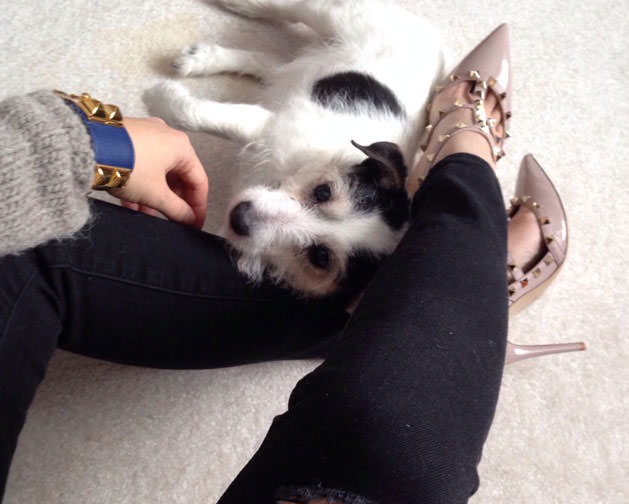Hermes-CDC-Valentino-Rockstuds-and-Pup