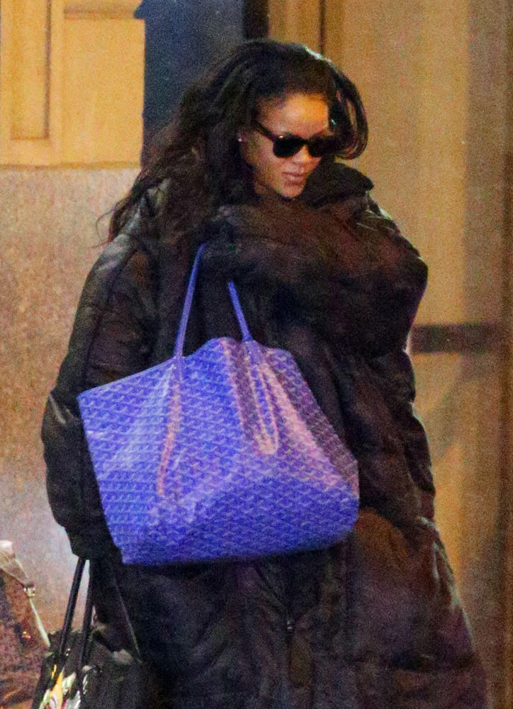 The Many Bags of Rihanna Part 3-31