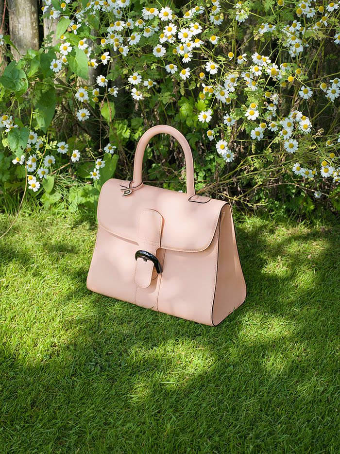 Delvaux Spring 2015 9