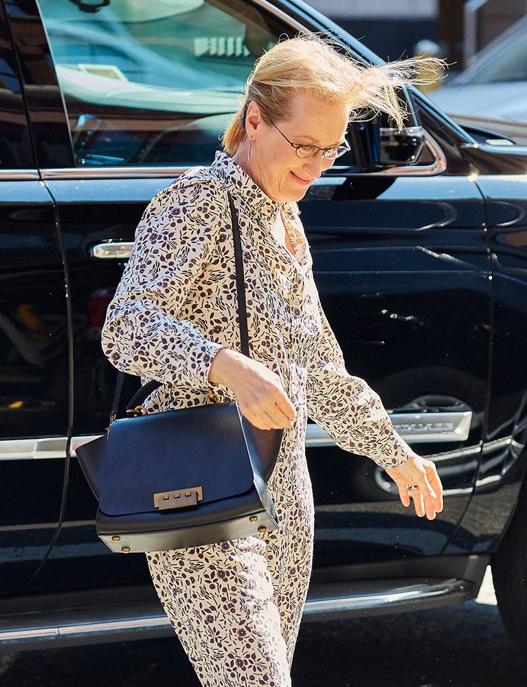 Meryl-Streep-ZAC-Zac-Posen-Eartha-Bag