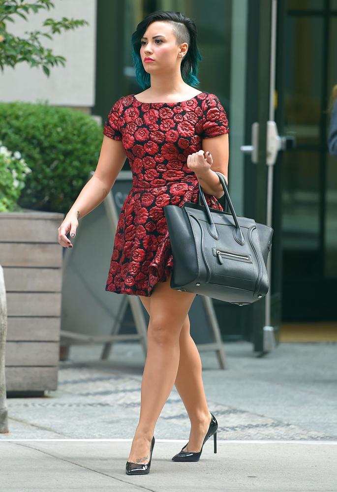 Demi-Lovato-Celine-Luggage-Tote-9