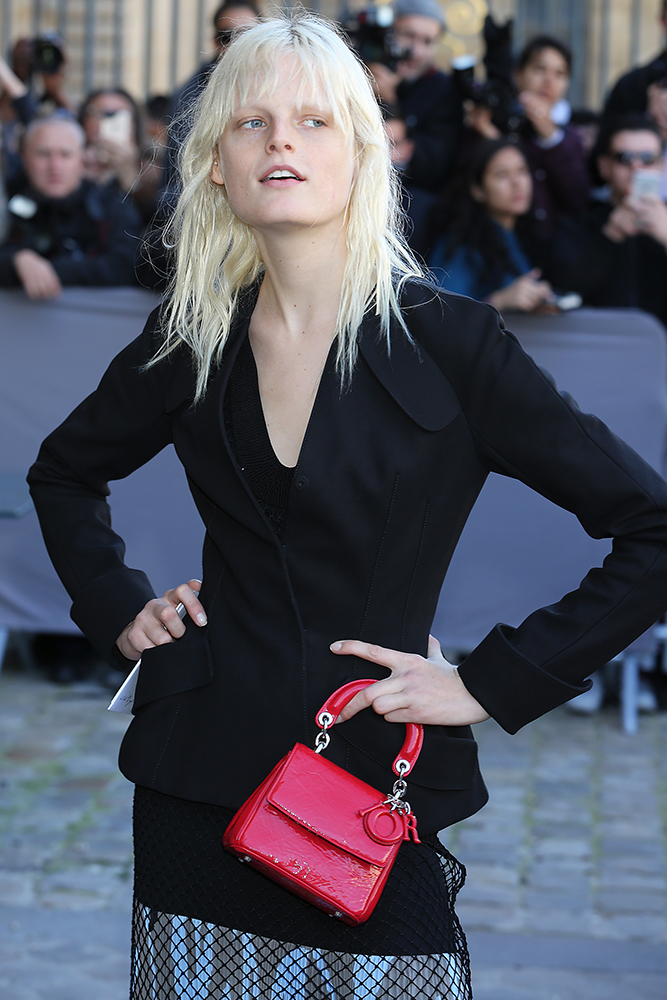 Hanne-Gaby-Odiele-Christian-Dior-Be-Dior-Bag