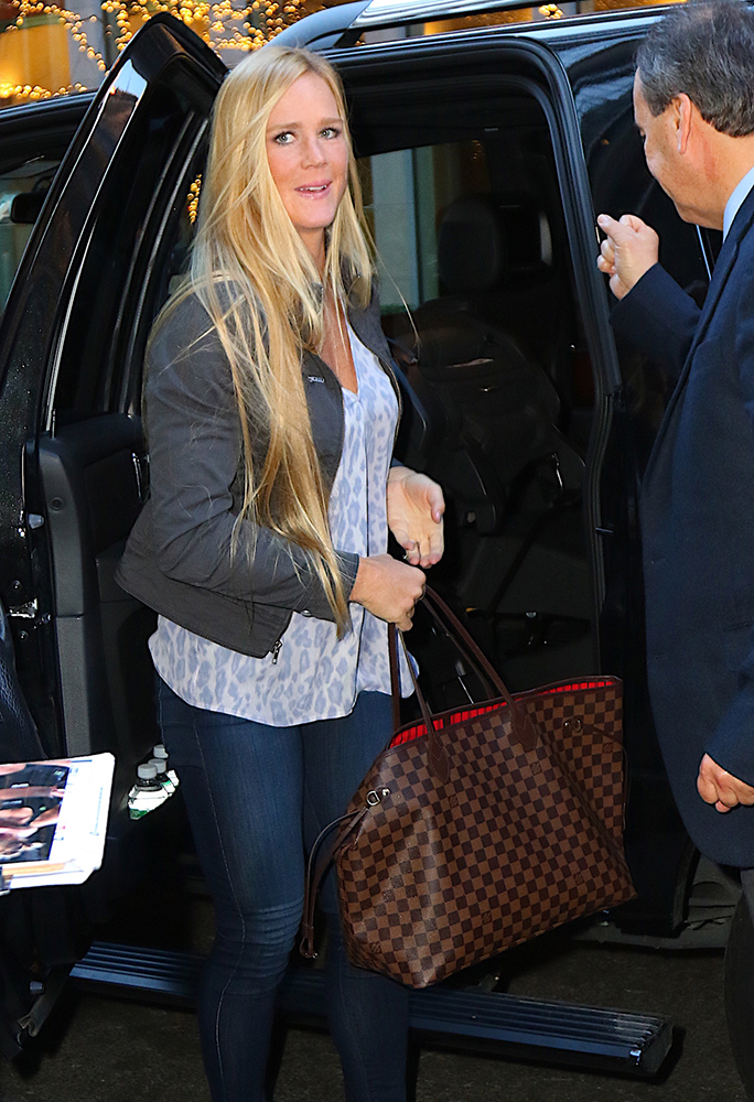 Holly-Holm-Louis-Vuitton-Damier-Neverfull-Tote