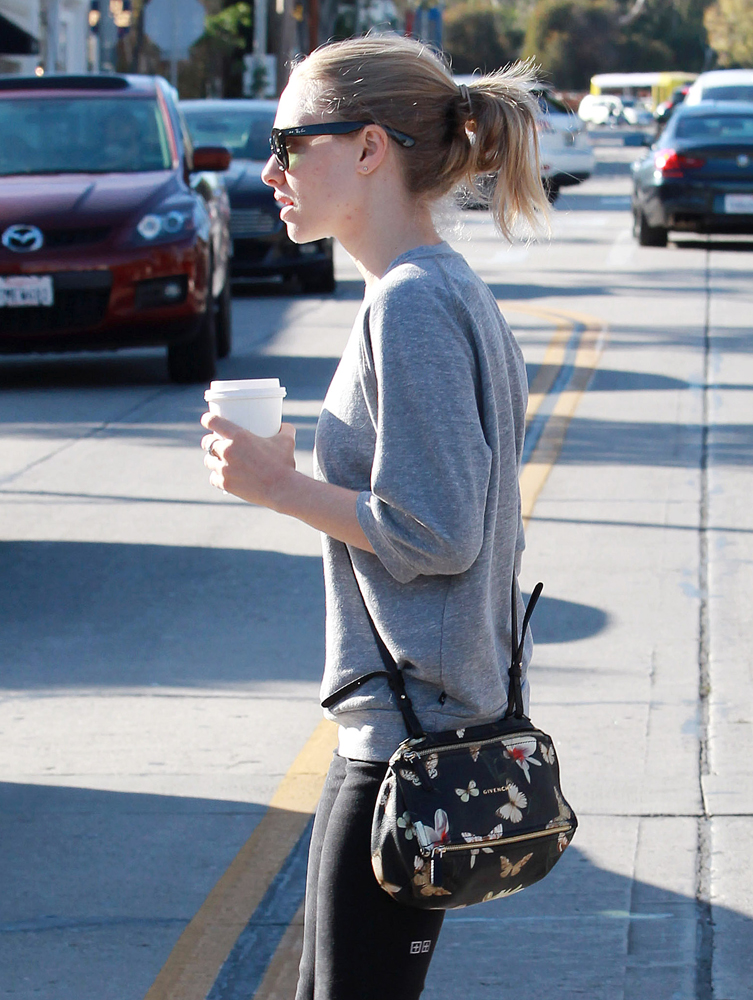 Amanda-Seyfried-Givenchy-Magnolia-Mini-Pandora-Bag