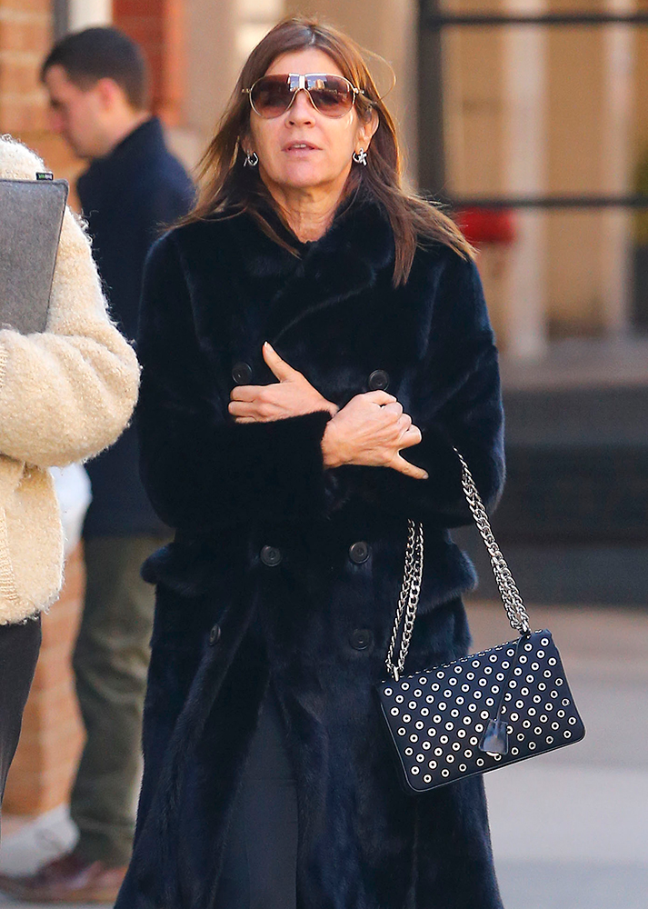 Carine-Roitfeld-Grommet-Shoulder-Bag