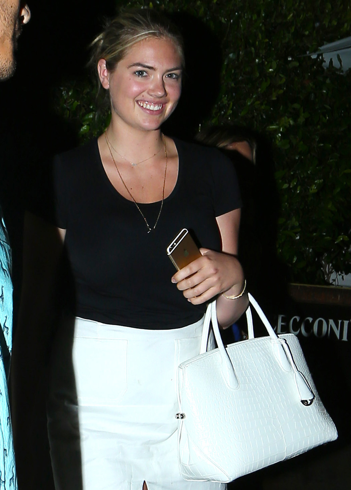 Kate-Upton-Dior-Alligator-Open-Bar-Bag