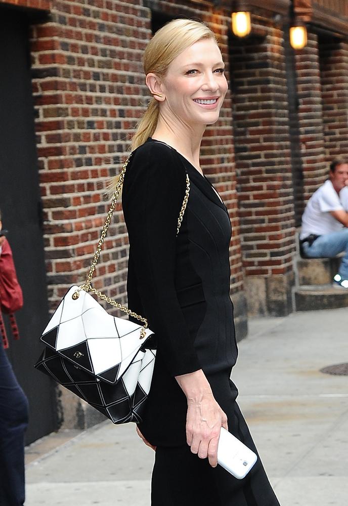 Cate-Blanchett-Roger-Vivier-Bicolor-Prismick-Bag