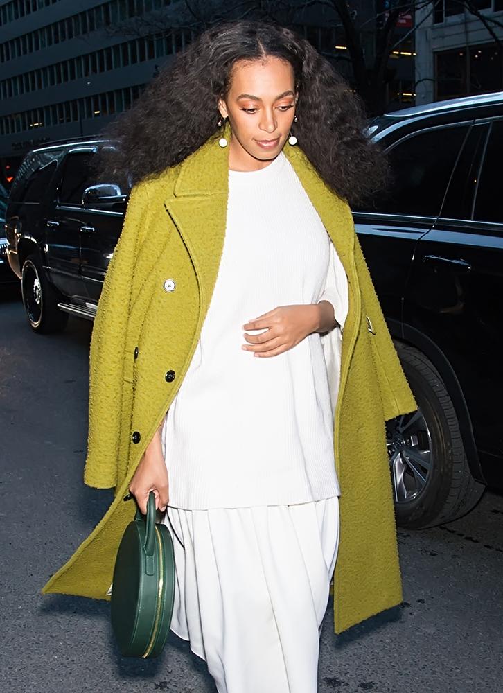 Solange-Knowles-Mansur-Gavriel-Circle-Bag