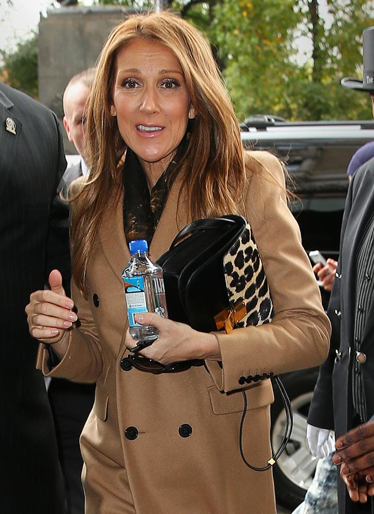 Celine-Dion-Celine-Classic-Box-Bag-Leopard