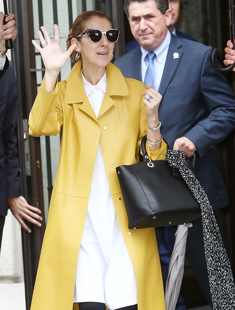 The Many Bags of Céline Dion - PurseBlog