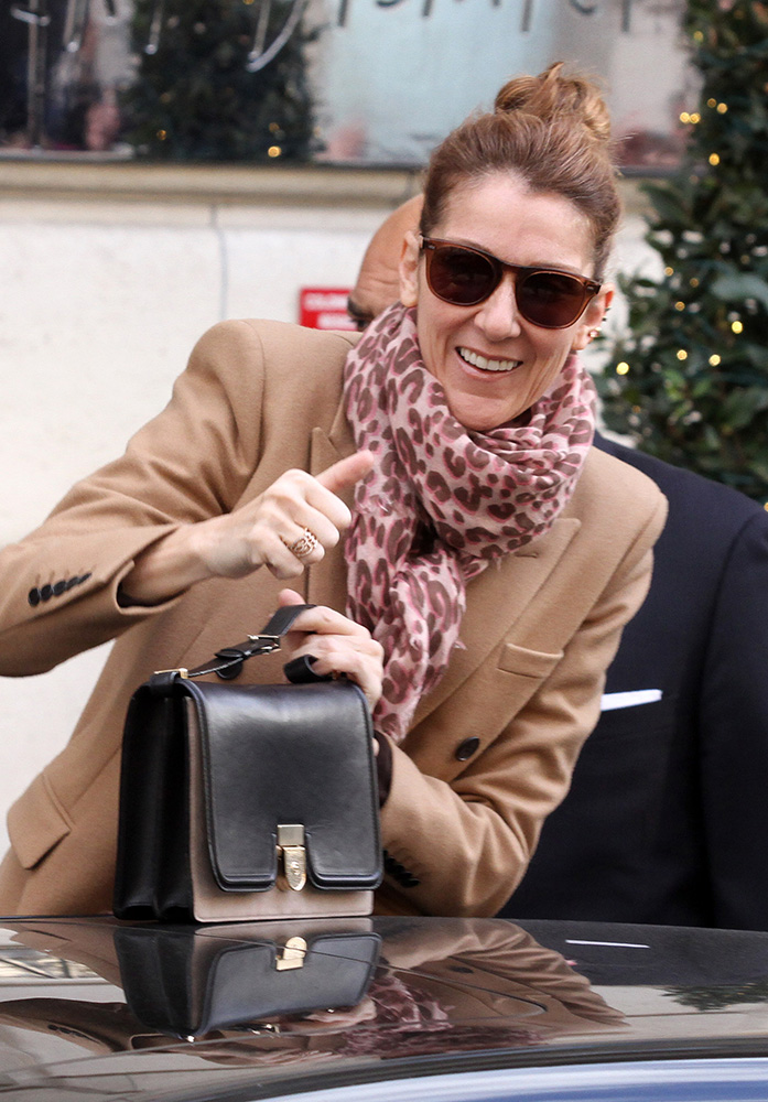Celine-Dion-Victoria-Beckham-Shoulder-Bag