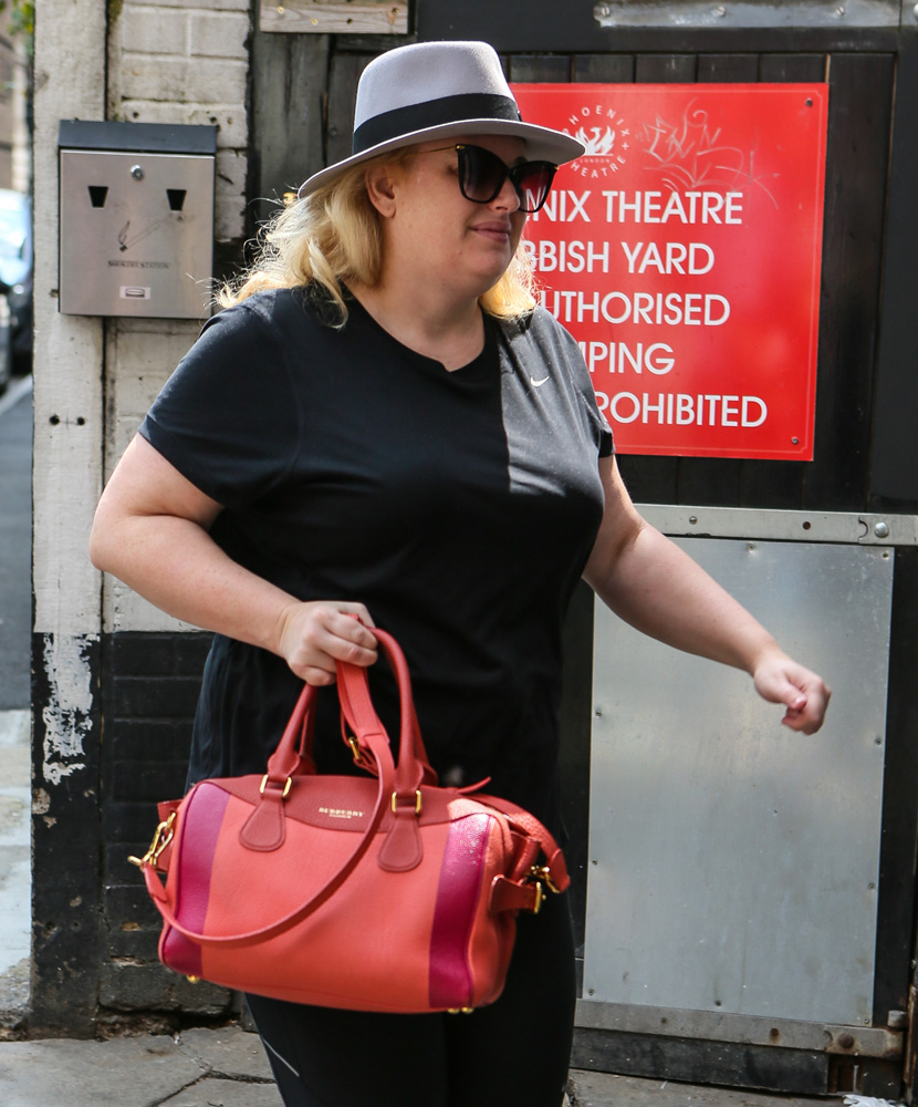 Rebel-Wilson-Burberry-Colorblock-Satchel