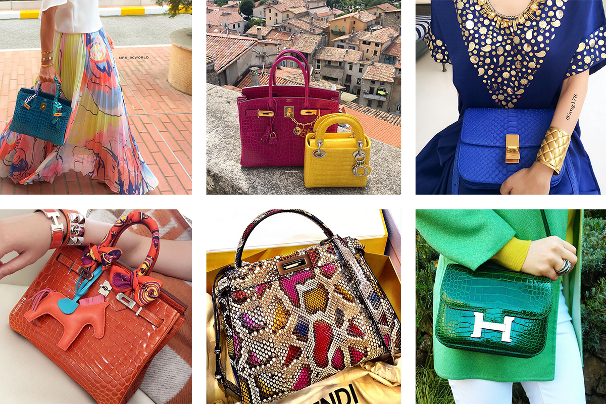 2a0ec4400a43 Exquisite Exotics  A Look at Some of the Best Striking Exotic Bags ...