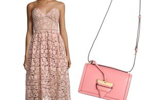Perfect Pairs Self Portrait Dress Loewe Bag