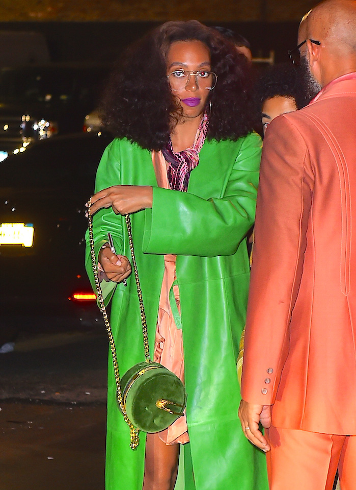 Solange-Knowles-Velvet-Bag