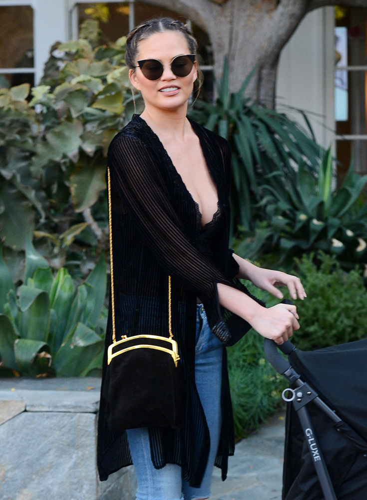 chrissy-teigen-the-row-kisslock-frame-bag