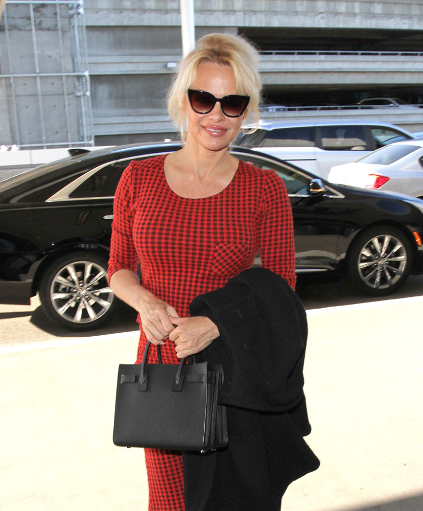 The Many Bags Of Pamela Anderson Purseblog