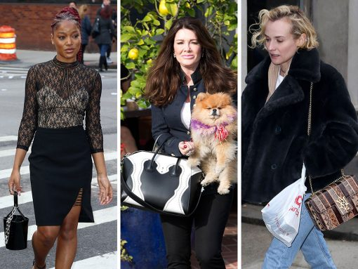 Celebs Show Off a Staggering Bag Selection from Alexander McQueen, Alexander Wang and Sophie Hulme