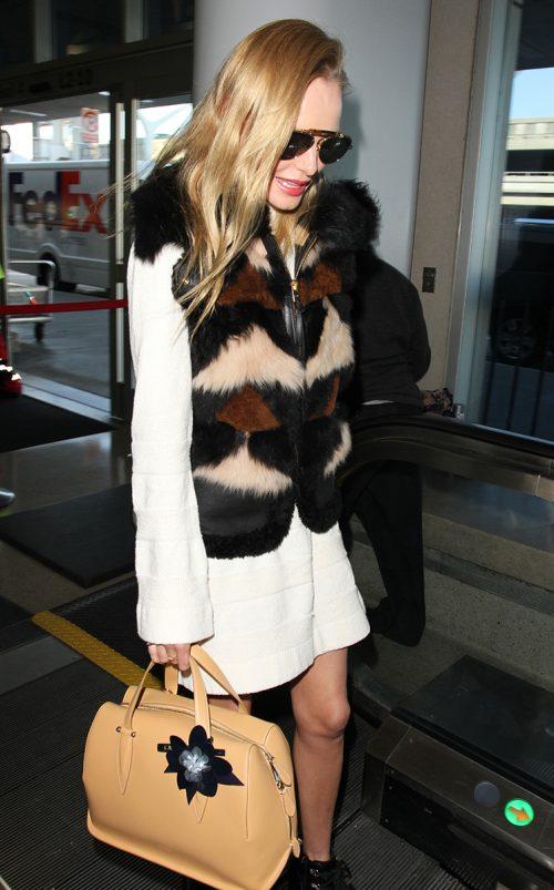 Kate Bosworth Delpozo Bag 2
