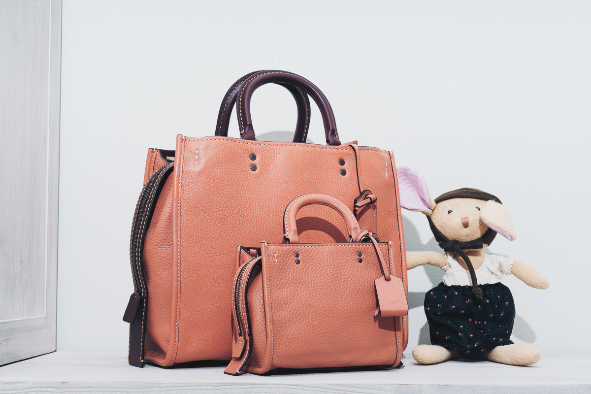 2a3ea820ae23 I LOVE the Coach Rogue and now they make a small size! This bag actually  will allow Millie to carry some items, like a pacifier and chew toy and  food pouch.