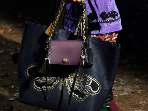 Coach s Fall 2018 Bags Reflect the Season s Moody 757b2620f470d