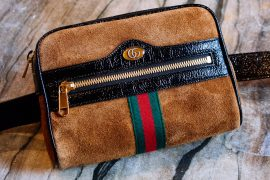 Meet the Gucci Ophidia Belt Bag