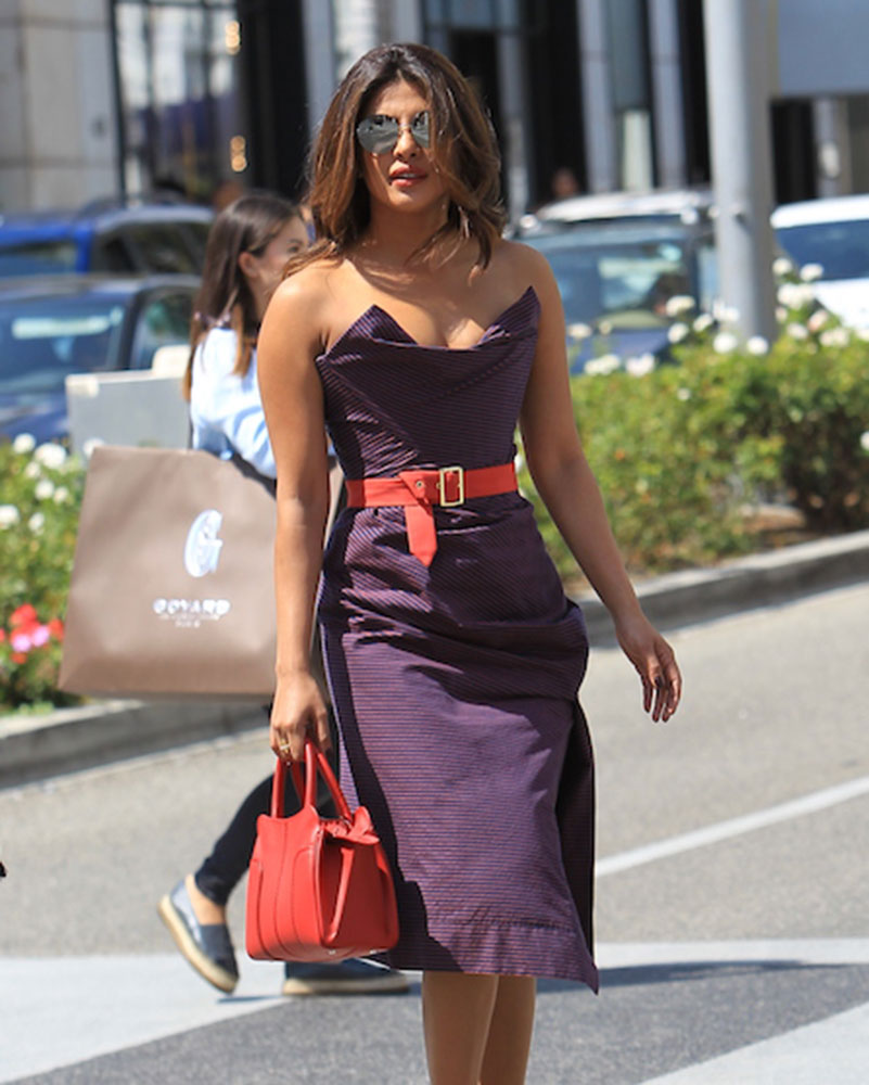 Priyanka Chopra S Colorful Modern Taste In Bags Delights