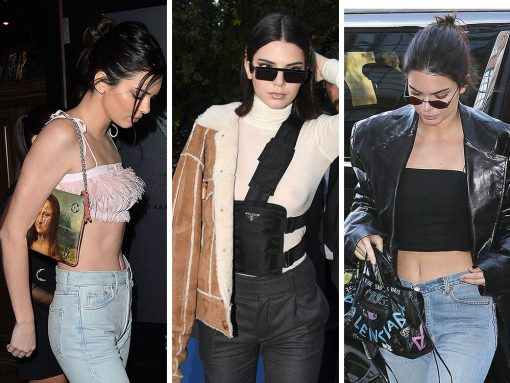 Kendall Jenner Sure Has Been Carrying Some Weird Bags Recently