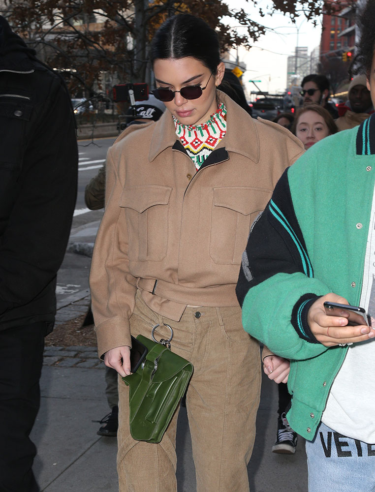 c1253246efd4 Kendall Jenner Sure Has Been Carrying Some Weird Bags Recently ...