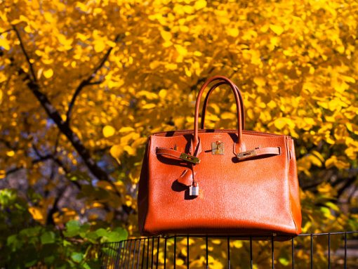 Real Talk: I Don't Ever Want to Own an Hermès Birkin