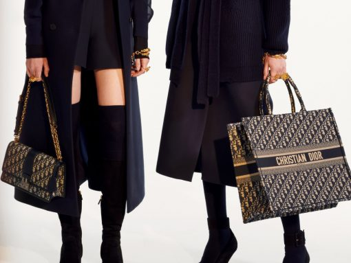 4789d6957ac Christian Dior Handbags and Purses - PurseBlog
