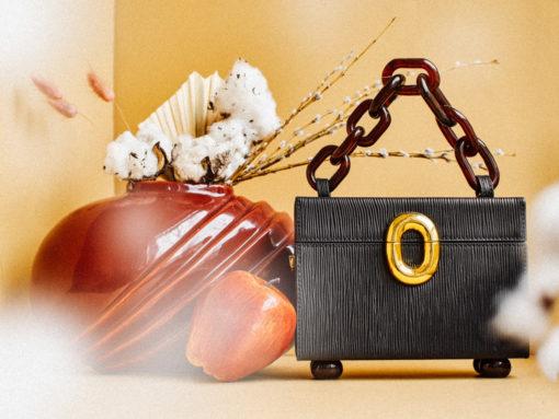 Review: Lizzie Fortunato Cinema Box Bag